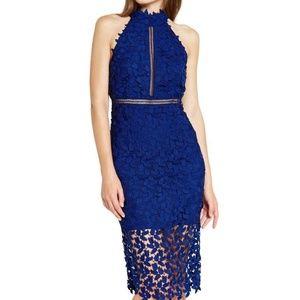Bardot Gemma Halter Lace Dress Cobalt Blue NEW